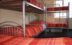 Picture of Single Bed in 6-Bed Dorm