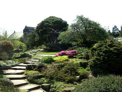 Some stone steps leading round some pink flora